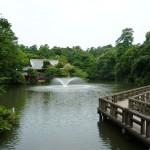 「井の頭公園