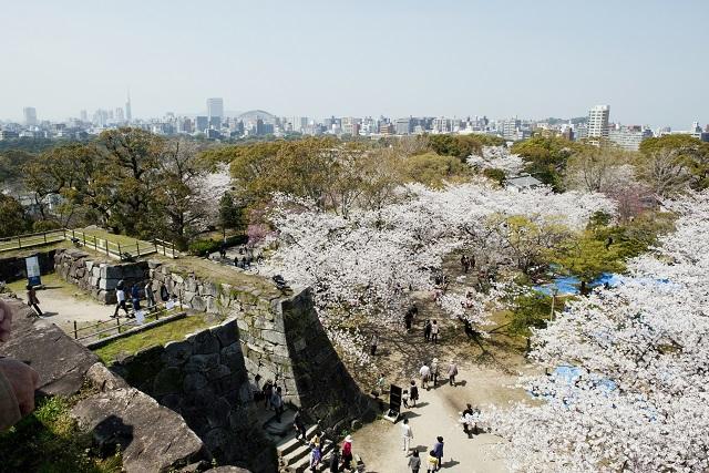 さよなら寒さ! 2月3月に行きたい九州地方の観光地!