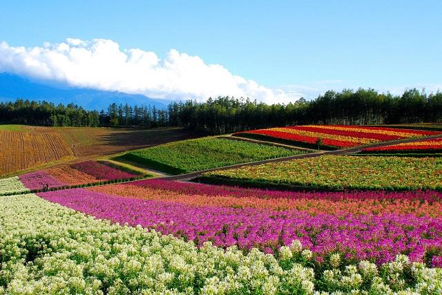 今年は10連休⁉ GWは東北・北海道に旅行に行こう