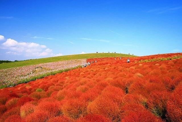 秋の週末は絶景を観に行く! 関東の絶景スポット!