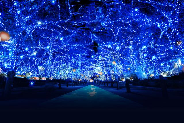 やっぱり出かけて遊びたい! デートに使いたいクリスマスイベント!